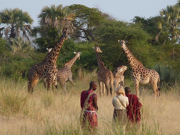 Tanzania-walking-safari1